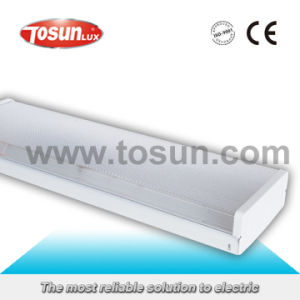 T8 Fluorescent Fixture with PS Cover pictures & photos