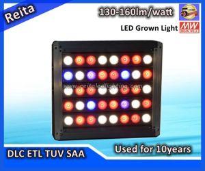 130-160lm/W 400W LED Grow Lighting