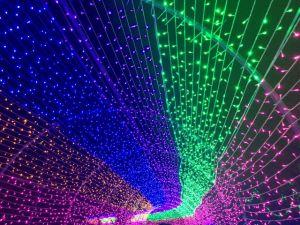 LED Christmas Decoration Light Pole Flag Tree Lights pictures & photos