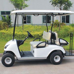 4 Person Golf Cart with Foldable Additional Seater (DG-C2+2) pictures & photos