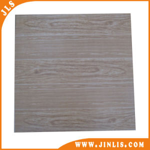 Home Decoration 3D Inkjet Rustic Ceramic Floor Tile (600X600mm) pictures & photos
