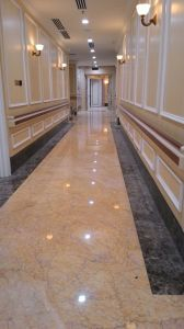 Baseboard Moulding Hospital Corridor Wall Guards pictures & photos