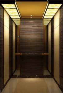 Luxury Villa Elevator Lift pictures & photos