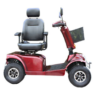 Folding 800W Electric Double Seat Mobility Scooter pictures & photos