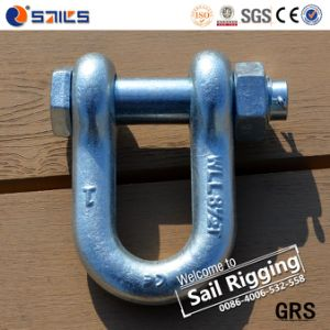 G2150 Chain Bolt Type Shackle pictures & photos