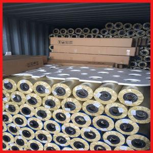 High Quality Backlit Flex PVC pictures & photos