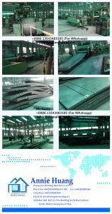 Chequer Steel Plate pictures & photos
