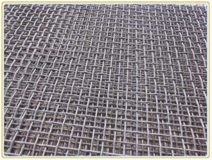 Electro Galvanized/Stainless Steel Crimped Wire Mesh pictures & photos