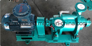 Vacuum Pump for Suction and Contraction Gas pictures & photos
