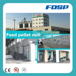 High-Tech Brand Special Ruminant Feed Production Line pictures & photos