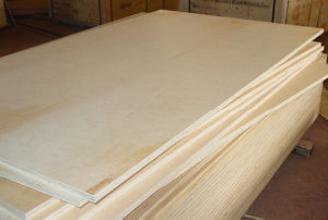 18mm Birch Plywood pictures & photos
