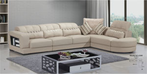 China Ciff 1+3+Couch Genuine Leather Sofa (210) pictures & photos