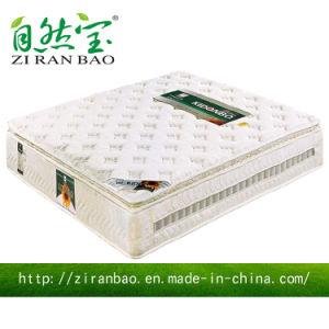 High Quality Memory Foam Full Size Pocket Spring Mattress (ZRB-844)
