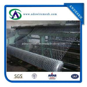 1′′ 2′′ Chicken Wire, Hexagonal Wire Netting, Chicken Wire Mesh pictures & photos
