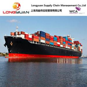 Logistics Service Sea Freight (Shanghai to ONNE, Nigeria)