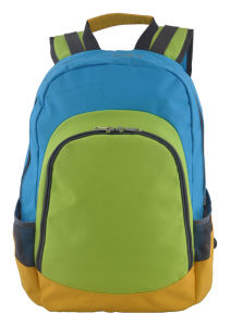 Laptop Backpack for School, Campus, Hiking, Traveling with Good Price pictures & photos
