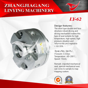 Mechanical Seal (LY-62) pictures & photos