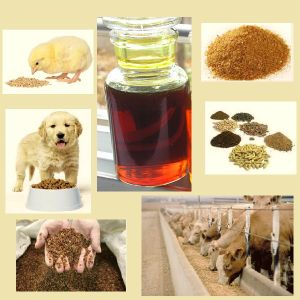 Raw Material Soy Lecithin Fluid pictures & photos