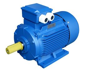 Large Electric Motor