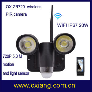 Home Outdoor Security Floodlight WiFi Camera pictures & photos