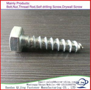 High Quality Hex Head Wood Screw pictures & photos