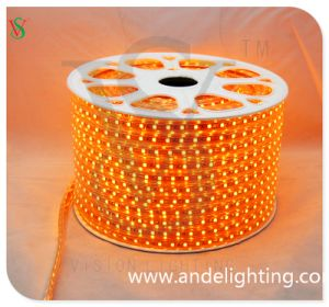 12V SMD5050 High Brightness Color LED Rope Light pictures & photos