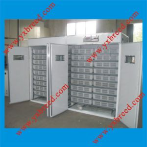 Microcomputer Automatic Incubator Chicken Egg pictures & photos