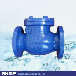Swing Check Valve in Cast Iron Body