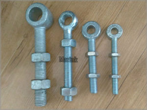 Eye Bolts with Two Nuts pictures & photos