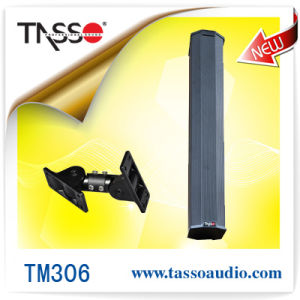 PRO Surrounding Sound Audio Loudspeaker (TM306)