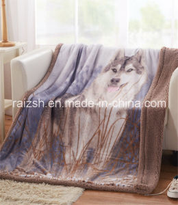 British American Style Double Blankets pictures & photos