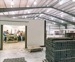 Fire Proof Steel Structure /Storage Warehouse (DG1-019) pictures & photos