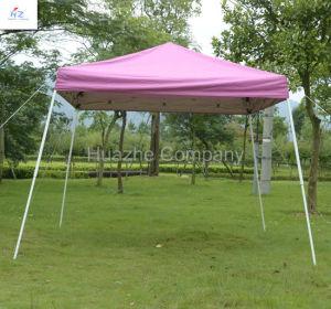 8X8/10X10FT Slant Canopy pictures & photos