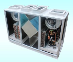 Fresh Air Handling Unit (HAX005, HAX008, HAX010) pictures & photos