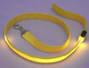 Long High Quality LED Nylon Dog Leash for Hand Free
