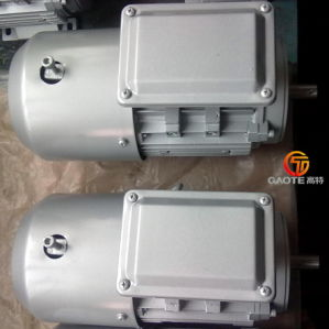 1.1kw Frequency Control Inverter Duty Motor pictures & photos