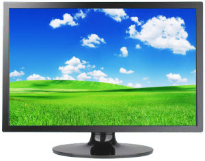 """20.1"""" LCD Monitor for Computer (2001BQ)"""