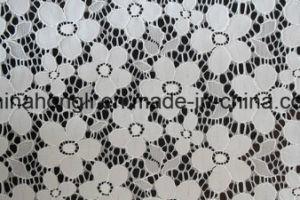 Nylon Lace pictures & photos