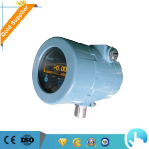 Natural Gas Mass Flow Meter with RS485 Output pictures & photos