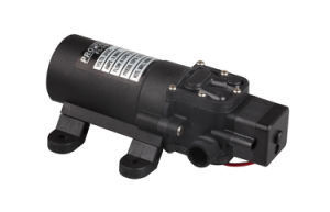 """Lifesrc Compact Agricultural 12V/24V Diaphragm Pump (With 1/2"""" External Thread Inlet/Outlet)) pictures & photos"""