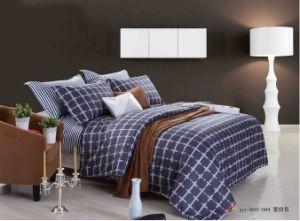 Fashion Bedding Set Design Comforter Duvet Cover Bedding Set pictures & photos
