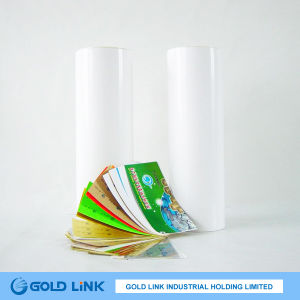 Label Printing White Adhesive PVC Vinyl Film (P9313-W) pictures & photos