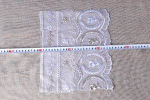 Popular Fashion for Girls Embroidery Lace/Nylon Lace pictures & photos