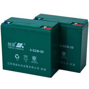 12 Volt 20ah Electric Bike Battery, VRLA Battery (6-DZM-20)