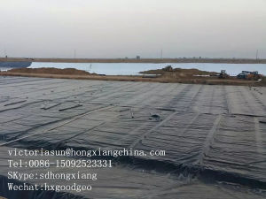 Salt Pond Geomembrane pictures & photos