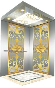 Machine Room-Less Space Saving Passenger Elevator (TKWJ-RLS102) pictures & photos