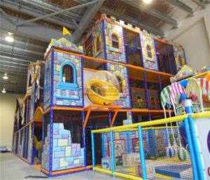 Cheer Amusement Jungle Theme Indoor Playground Equipment pictures & photos