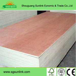 Commercial Timber Poplar / Birch / Pine Plywood for Furniture pictures & photos