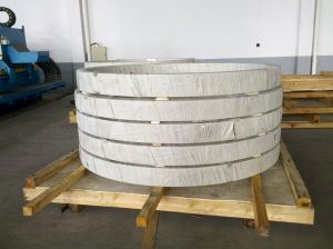 Seamless Rolled Rings up to Max. 4500mm, Max. 4, 5t pictures & photos