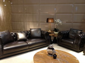 Villa Living Room Furniture Leather Sofa pictures & photos